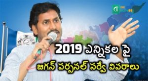 Jagan Personal Survey details of the 2019 election