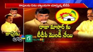 TDP Leaders &Activitist Disappoints On CM Chandrababu Naidu
