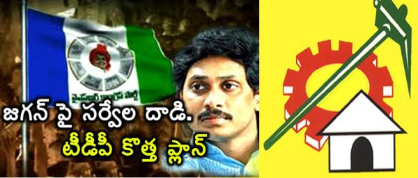 TDP attacks YCP on new political war