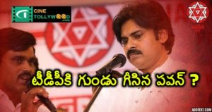 Pawan Kalyan Sensational comments on TDP government
