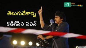 Pawan Kalyan Fires on Telugu Desam party on Janasena Maha Sabha-Cinetollywood.com