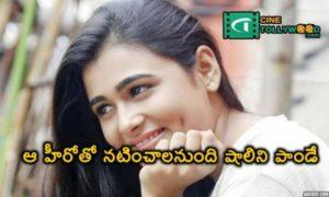Shalini Pandey wants to act with Kamal Hasan