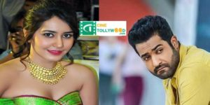 Shock if you know what the Rasikanna told the NTR cinema