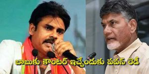 Pawan will be ready to give by a counter to chandrababu