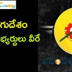 Telugu Desam Party MP Candidates list