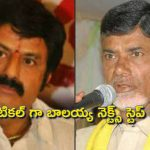 What is the role of Balakrishna next step as Politically