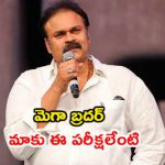 Mega Brother Naga Babu